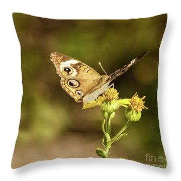 Butterfly In Bokeh Throw Pillow