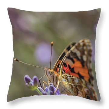 Throw Pillow featuring the photograph Butterfly In Close Up by Patricia Hofmeester