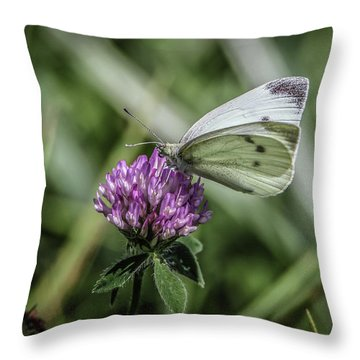 Butterfly In Love Throw Pillow