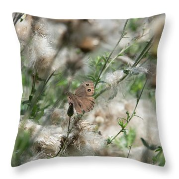 Butterfly In Puffy Seed Heads Throw Pillow