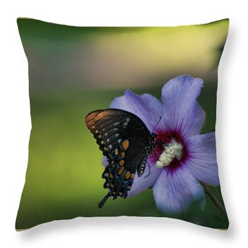 Butterfly Lunch Throw Pillow