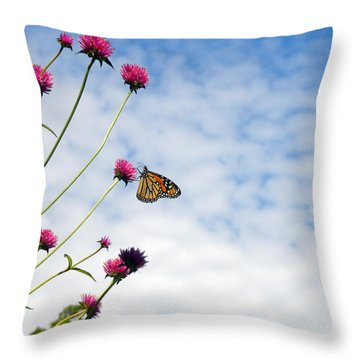 Butterfly Magic Throw Pillow by Teresa Schomig