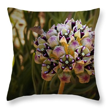 Butterfly Magnet Throw Pillow