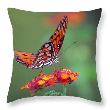 Butterfly Majestic Throw Pillow