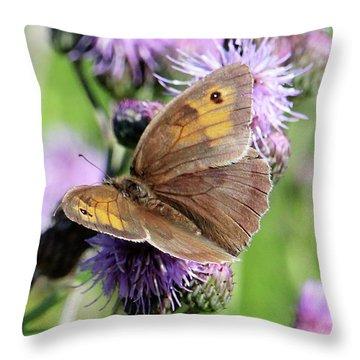 Butterfly Photograph  Throw Pillow