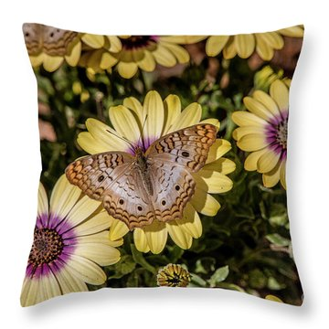 Butterfly On Blossoms Throw Pillow