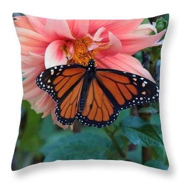 Butterfly On Dahlia Throw Pillow