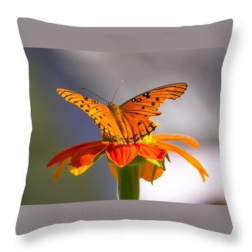 Butterfly On Flower Throw Pillow