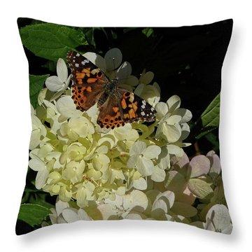 Butterfly On Hydrangea Throw Pillow