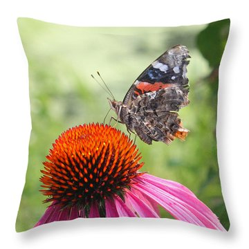 Throw Pillow featuring the photograph Butterfly On Pink Echinacea by Ellen Tully