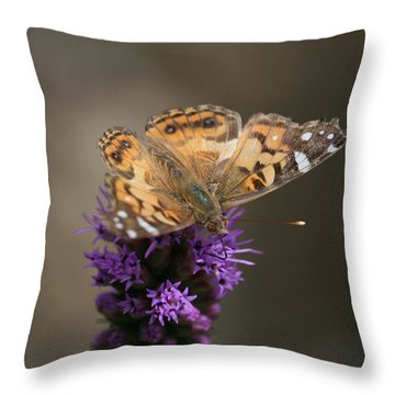Throw Pillow featuring the photograph Butterfly In Solo by Cathy Harper