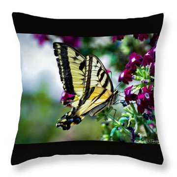 Butterfly On Purple Flowers Throw Pillow
