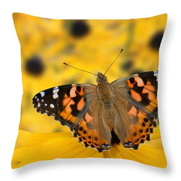 Butterfly On Rudbeckia Throw Pillow by Joe Bonita