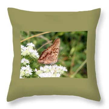 Throw Pillow featuring the photograph Butterfly On White Flowers by Ellen Tully
