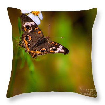 Butterfly One Throw Pillow