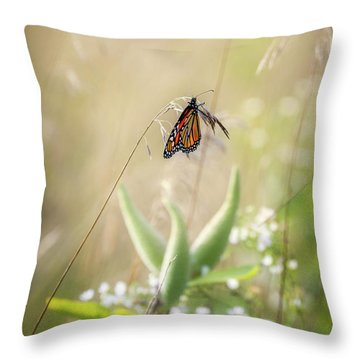 Throw Pillow featuring the photograph Butterfly Paradise by Bill Wakeley