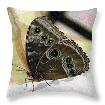 Butterfly Pastel  Throw Pillow by Don Wright