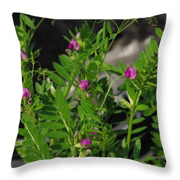 Butterfly Pea Throw Pillow by Robyn Stacey