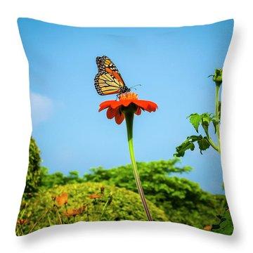 Butterfly Perch Throw Pillow
