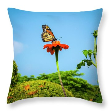 Butterfly Perch Throw Pillow
