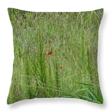 Throw Pillow featuring the photograph Butterfly Playground by Carol  Bradley