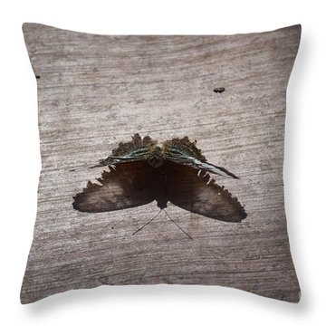 Butterfly See Through Throw Pillow