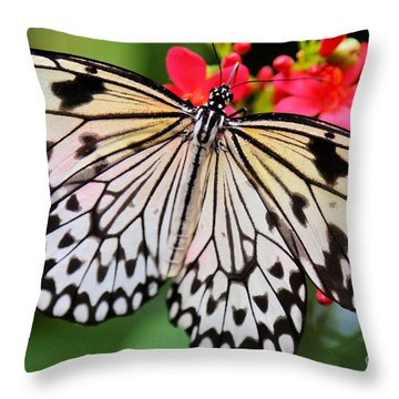 Butterfly Spectacular Throw Pillow