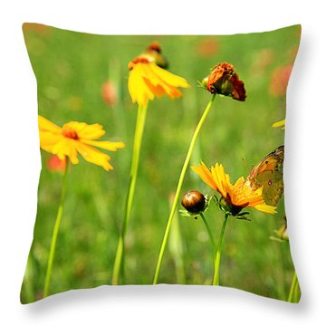Butterfly  Throw Pillow by Toni Hopper