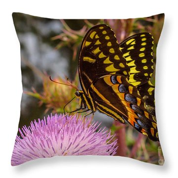Throw Pillow featuring the photograph Butterfly Visit by Tom Claud