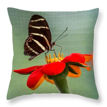 Throw Pillow featuring the photograph Butterfly Zebra Longwing On Zinnia by Patti Deters
