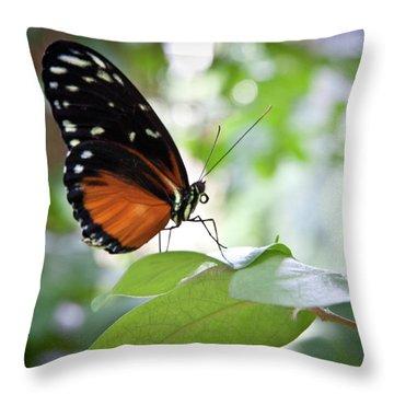 Butterfly2 Throw Pillow