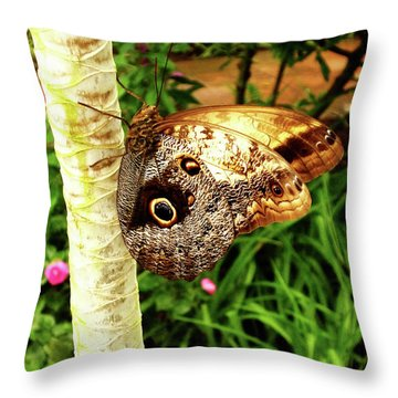 Butterfly's Eyes Throw Pillow
