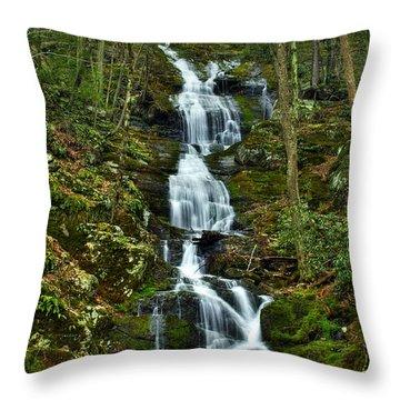 Buttermilk Falls Spring Throw Pillow