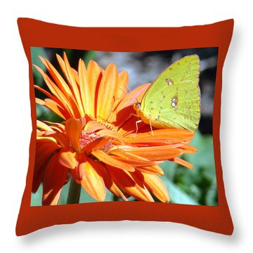 Butters Throw Pillow