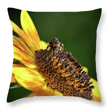 Buzzin' Around Throw Pillow