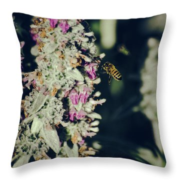 Buzzing In My Lamb's Ear Throw Pillow