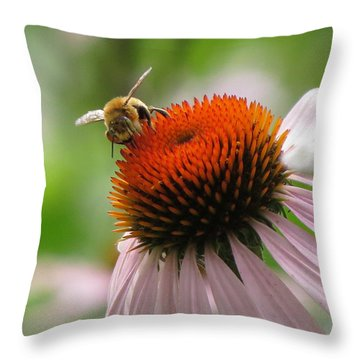 Buzzing The Coneflower Throw Pillow by Kimberly Mackowski