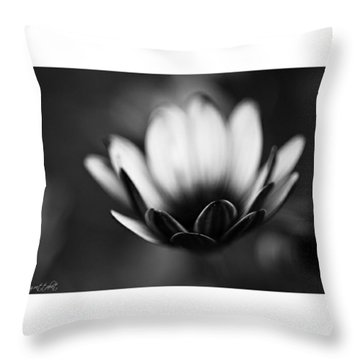 #bw #closeup #petals #someyearsago Throw Pillow