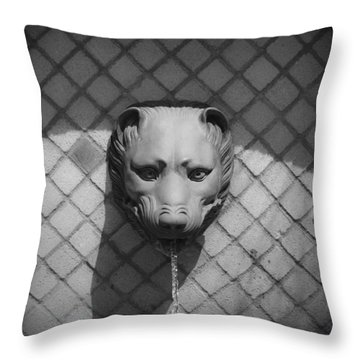 Bw Fountain Head Throw Pillow