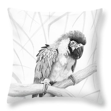 Bw Parrot Throw Pillow
