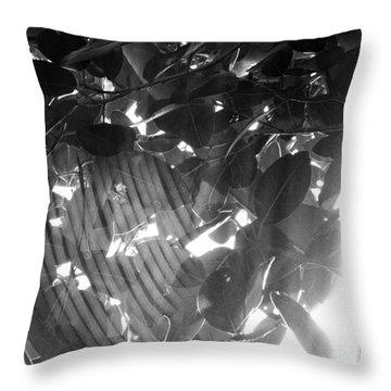 Bw Shadow Threads Throw Pillow