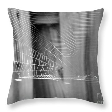 Bw Spiderweb Throw Pillow