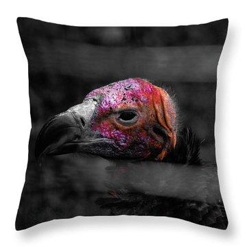 Bw Vulture - Wildlife Throw Pillow