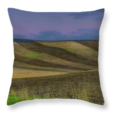 By A Different Light Throw Pillow