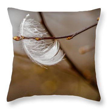 By Chance Throw Pillow