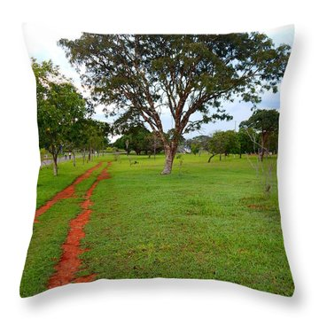 Throw Pillow featuring the photograph By My Side by Beto Machado