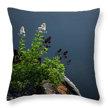 By The Edge Throw Pillow