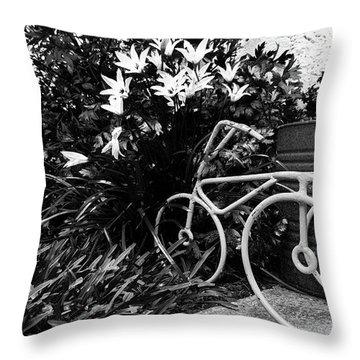 By The Flower Garden. Throw Pillow