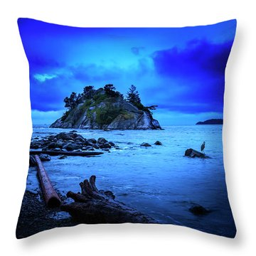 Throw Pillow featuring the photograph By The Light Of The Moon by John Poon