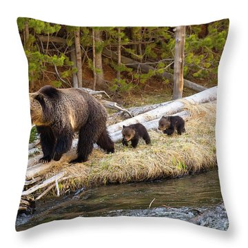 By The River Throw Pillow by Aaron Whittemore